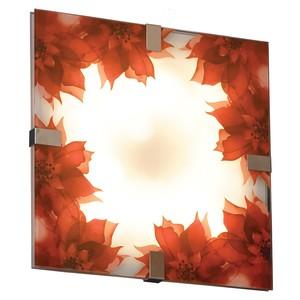 Настенно потолочный светильник Lussole LSN-5262-01